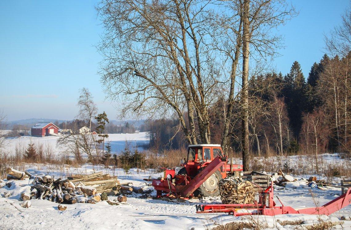 Frykter Elvestuen vil snikøke EU-krav i skogbruk