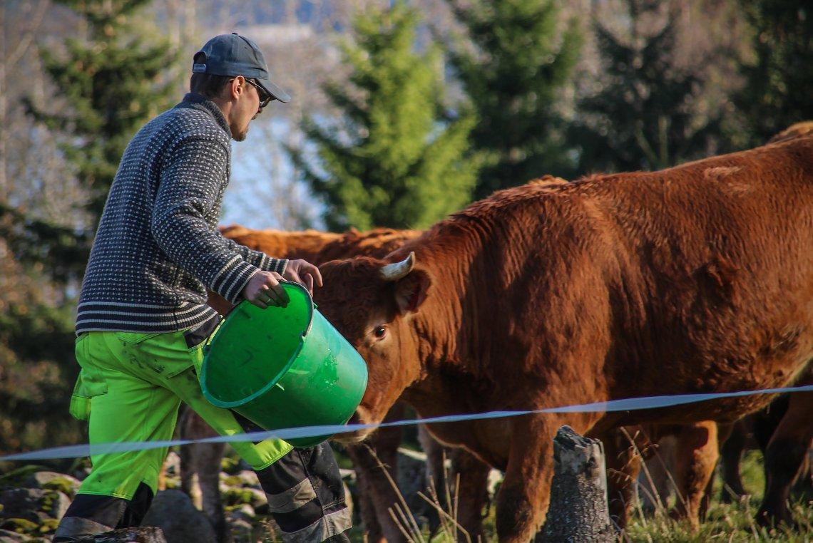 Jordbruk i heile landet