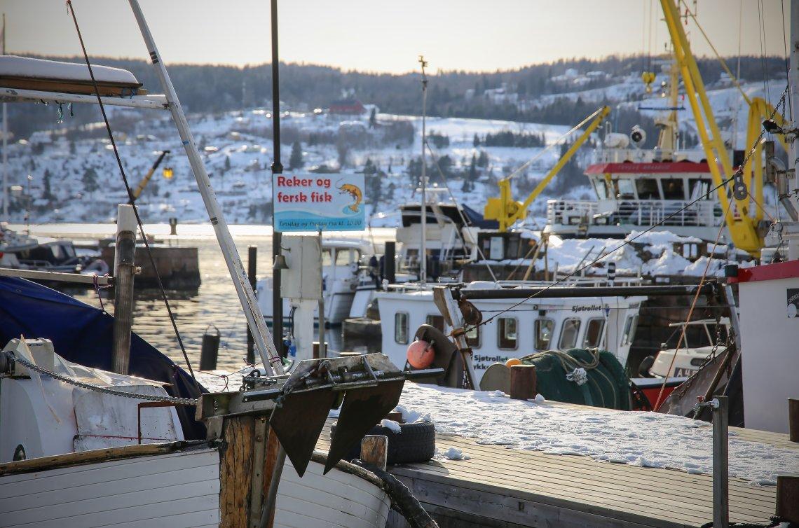 Senterpartiet vil ha trålfisken på land i Norge