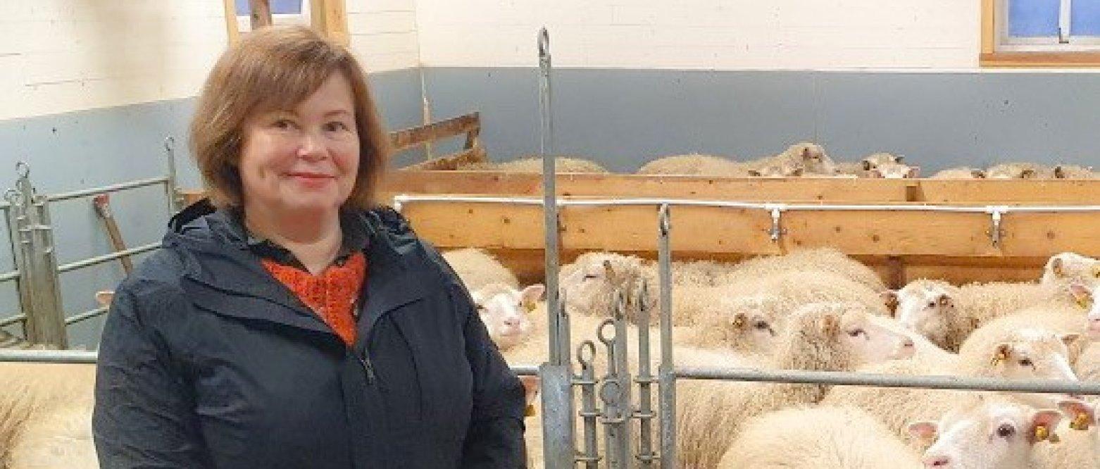 Kostholdet som klimakuren legger opp vil føre til masseslakt av husdyr