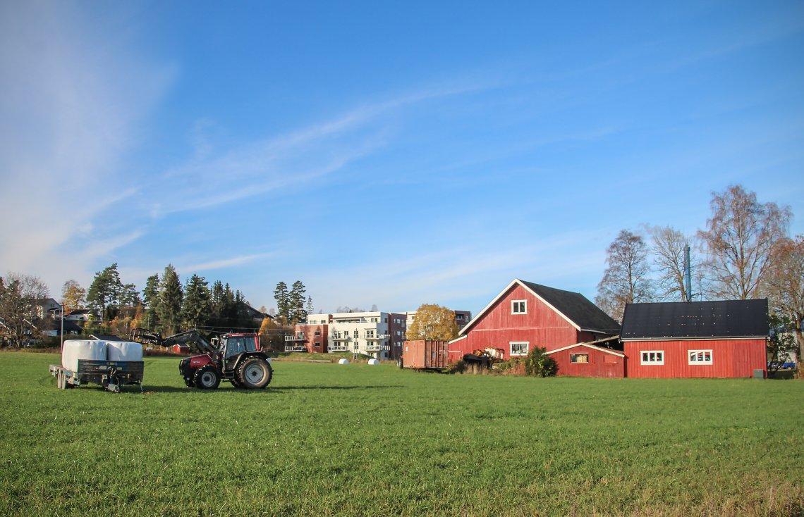 Ein landbrukspolitikk som sikrar matproduksjon for framtida